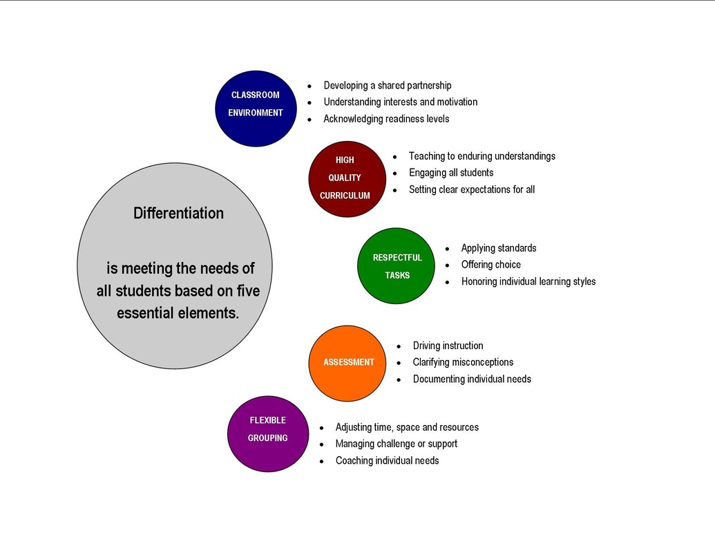 Dissertation On Differentiated Instruction
